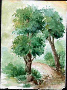 drawing classes - Basic Landscape C05 05 3 224x300 - Basic Landscape C05-05 Course Gallery