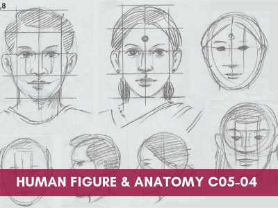 [object object] - Human Figure and Anatomy C05 04 - Online Art Courses for Age 4 to 15 yrs Kids in Pune, India Grafiti Expressions