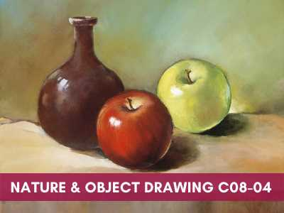 advance courses - Nature Object Drawing C08 04 - Advance Courses